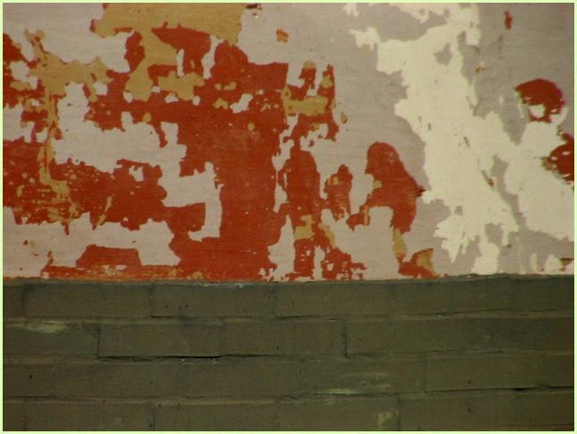 A talajból a nedvesség felszívódik a falakon keresztül. A talajban lévõ ásványi anyagok, sók is oldott állapotban feljutnak, ennek következtében a vakolat leválik, tapintásra vizes a fal.